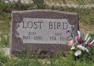 Lost Bird grave site