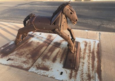 Tin Horse Highway - brown horse