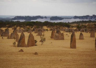 View of the Pinnacles National Park