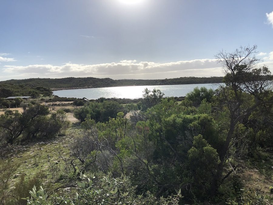 Yangie Bay, Coffin Bay National Park
