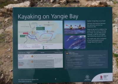 Kayaking on Yangie Bay